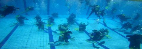 prove gratuite d'immersione